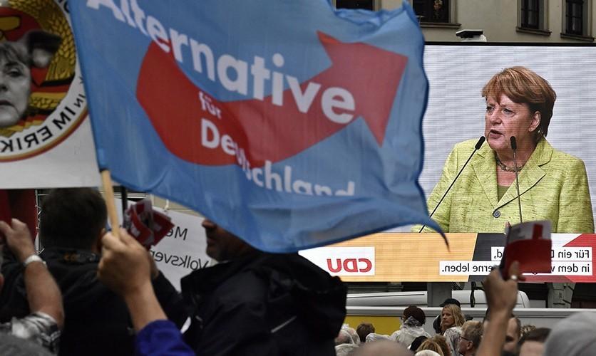"""Partidul naționalist """"Alternativa pentru Germania"""" vrea ieșirea țării din UE"""
