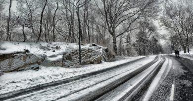 ALERTĂ în Marea Britanie! COD ROȘU de furtuni de zăpadă și îngheț. Transporturile ar putea fi afectate