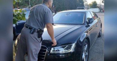 Trei români, arestați în Germania: Au vrut să înmatriculeze un Audi furat de la o firmă de închirieri din Spania