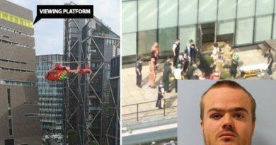 LONDRA: Un adolescent a aruncat un copil de pe clădirea unui muzeu doar ca să apară la știri