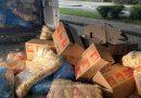Nouă persoane au încercat să ajungă ilegal în Germania, ascunse printre pufuleți